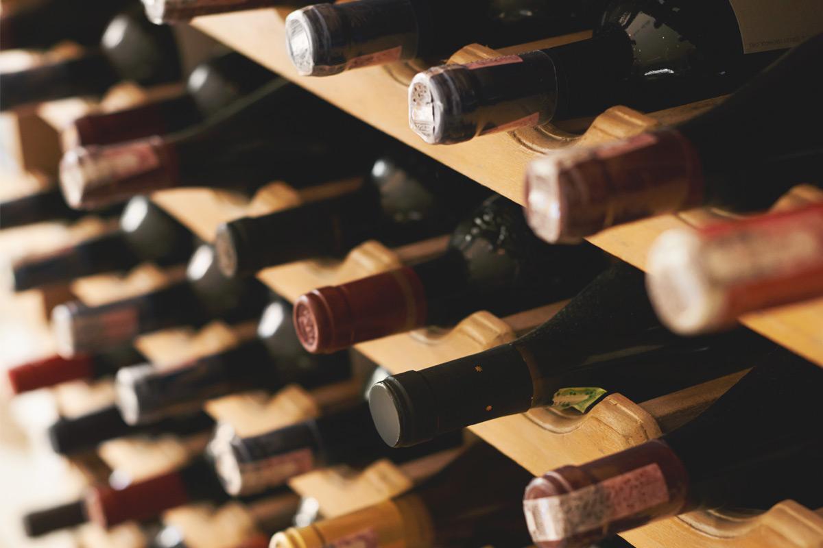 Les vignerons | Agence Class Vins Conseils | Bar Éphémère | Gladys et Maturin -3